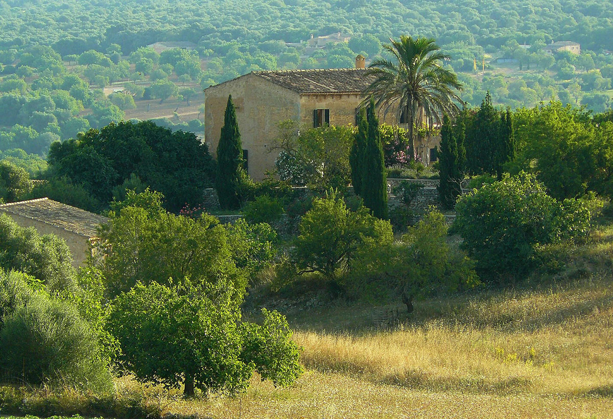 El anteproyecto de la Ley Agraria de las Illes Balears y su repercusión en las agroestancias